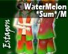 WaterMelon*Sum*HC