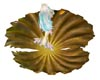 Mermaid Shell Bed 4p/1a