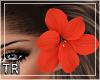 [T] Amelia Hair Flower