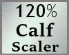 Scale Calf 120% MA