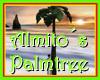 (ALM) ALMITO PALMTREE