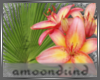 AM:: Tropical Flower Enh