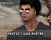 Perfect Giga Avatar 2017