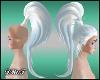 D- ADD Sky Pony Tail
