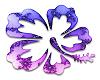 Hibiscus Purple/Blue
