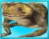 Enchanted Frog Ride