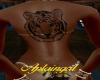 Siberian Tiger Back Tat