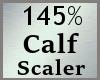 Scale Calf Calve 145% MA