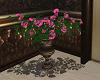 Twilights Roses