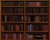 Book Wall Shelf/Books