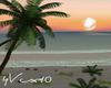 4V Sunset Beach