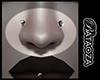 2 Studs nose