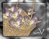 ~V Lavender Basket