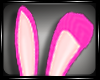 S♛ Bunny Ears