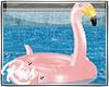 Rus: flamingo floatie