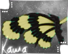 | Yiishu | Wings 2
