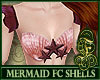 Flat Chest Shells Coral