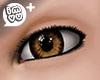IMVU+ M Eye Brn 1