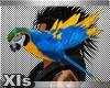 XIs Parrot