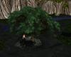 (T)Tree Swing