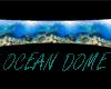 oceaan  coral dome