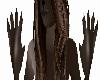 dark brown wolf paws