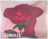E~ Valentine's Rose