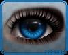 🐺 Anna | Eyes v2