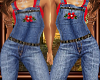 ~Country Overalls~