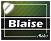 *NK* Blaise (Sign)