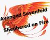 Shepherd on Fire