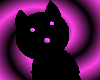 Black+ Pinkypurple Kitty