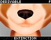 #mesh furry head nose
