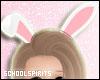 ❥ Bunny Ears