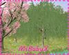 [1V4] willow Tree