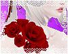 Red Shoulder Roses R