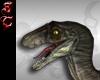 Dinosaur Velociraptor FV