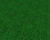 Grass enhancer