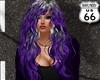 SD Aliza Grey Purple