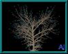 (A) Lighted Tree