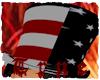 {TRUE) American Flag Hat