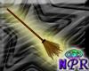 Standard Broom!
