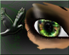 ~D~ Camo Eyes