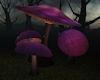 !Mystic Mushrooms