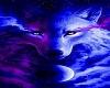 *Neon Wolf*