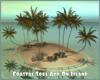 Coastal Soul Add-On Isla