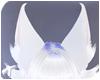 Foxy | Ears 4