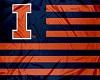 Illinois Illini Flag