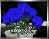 Hr| Blue Roses