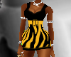 BlackNYellow Zebra Mini